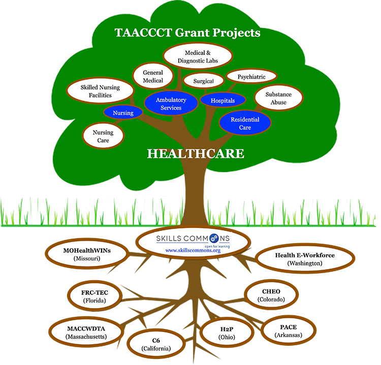 TAACCCT Grant Projects in Healthcare