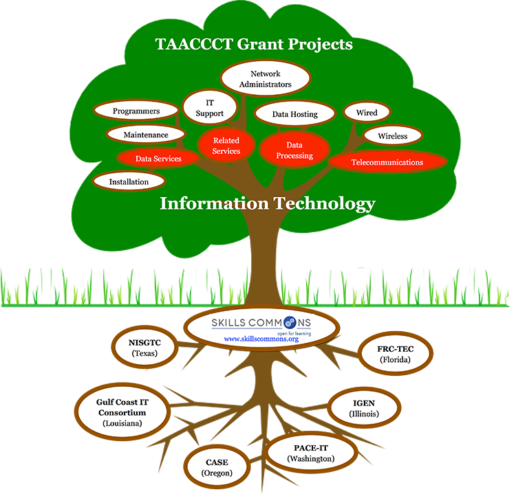 TAACCCT Grant Projects in IT